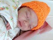 Ella Primasová se narodila 28. srpna 2017 ve 14.55 hodin mamince Petře Petrovové z Mostu. Měřila 52 cm a vážila 3,31 kilogramu.