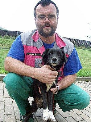 Vedoucí útulku Antonín Šlégr hladí šestnáctiletého psa, který se dostal do útulku před pár dny. Podle Šlégra nového majitele již nenajde.