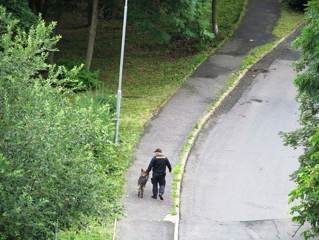 Policista se psem prochází Tylovu ulici.
