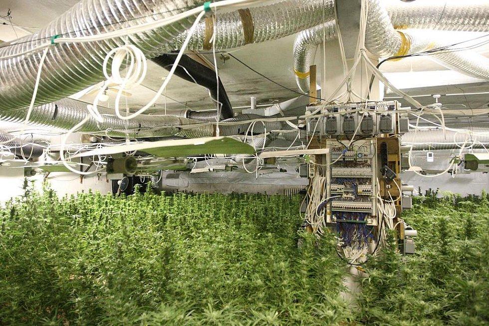 Pěstírnu marihuany kriminaklisté odhalili v zadním traktu bývalého nákupního střediska v Janově
