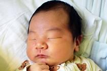 William Chen se narodil Fang Fang Wu z Litvínova 3. července v 12,14 v teplické porodnici. Měřil 56 cm, vážil 4,55 kg.