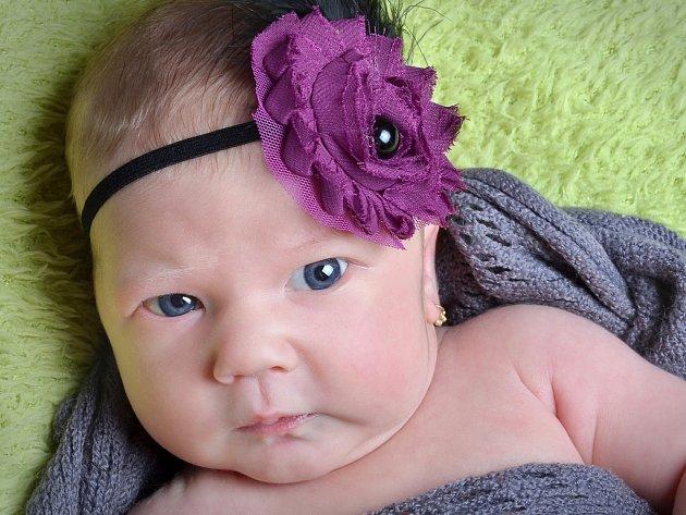 Barbora Jahodářová se narodila 15. října 2017 v 15.15 hodin mamince Veronice Jahodářové Lorenzové z Mostu. Měřila 52 cm a vážila 4,04 kilogramu.