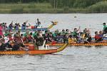 Závody dračích lodí na Matyldě, 2014