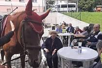Senioři v Meziboří prožili zábavné odpoledne s hipoterapií.