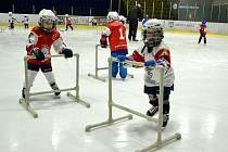 Mostečtí lvi pořádali v rámci akce Týden hokeje nábor do svých mládežnických týmů.