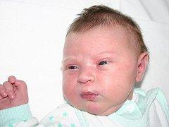 Mamince Šárce Víznerové se v Mostě 30. prosince 2009 ve 14.20 hodin narodila dcera Adéla Majerová. Měřila 55 centimetrů a vážila 4,76 kilogramu.
