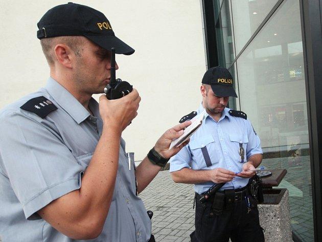 Policie se zaměřila na kapsáře i v roce 2010, kdy hlídky kontrolovaly podezřelé lidi v Centralu.