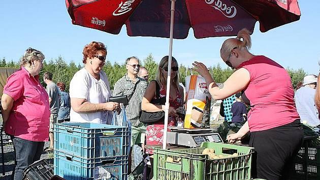 Farmářské trhy na hipodromu v Mostě.