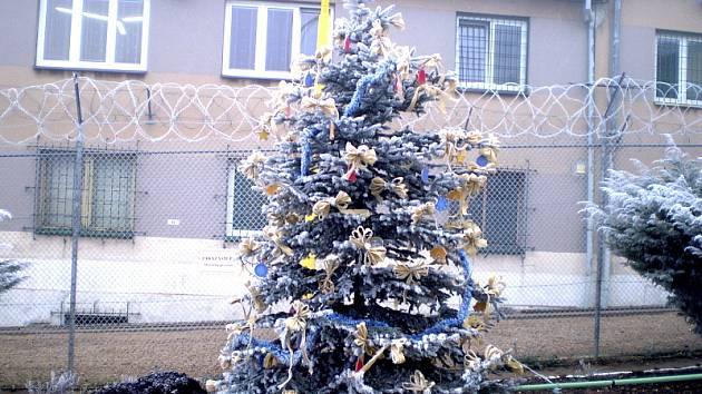 Vánoční strom před bělušickou věznicí.