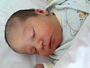 Nelly Pokorná se narodila 23. února 2018 v 9.14 hodin mamince Heleně Tóthové z Mostu. Měřila 47 cm a vážila 2,88 kilogramu.