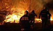 Hasiči bojují s lesním a travním požárem v okolí Lužic
