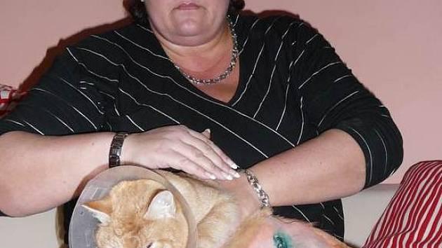 Alexandra Vránová doufá, že se její kocour brzy uzdraví.