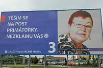 Zejména tento billboard SMM zmiňují ve svém návrhu.