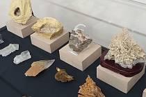 Výstava Sádrovec – neobyčejně obyčejný nerost je prodloužena.