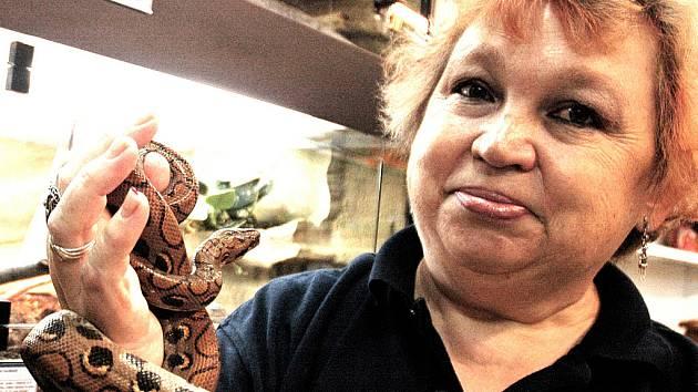 Pracovnice Pet Centra Hana Kašparová se mazlí s hroznýšovcem duhovým.