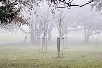 Mlha na Mostecku.