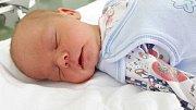 Dan Pelcman se narodil 13. září 2017 ve 13.45 hodin mamince Tereze Stejskalové z Lomu. Měřil 52 cm a vážil 3,55 kilogramu.