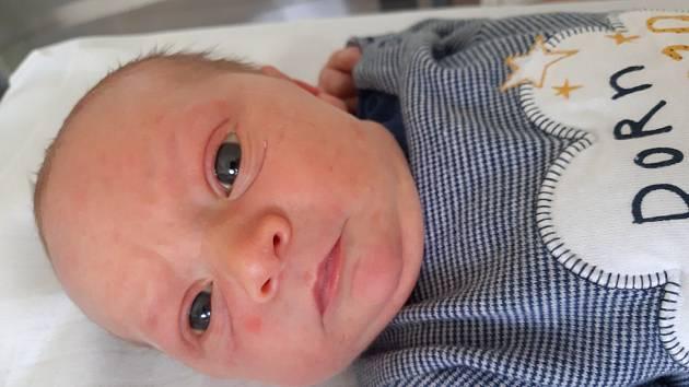 František Žorna se narodil mamince Kristýně Krejčí z Braňan 2. srpna v 9.09 hodin. Měřil 49 cm a vážil 3,16 kilogramu.