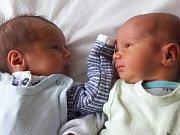 Štěpán a Matěj Frýdovi se narodili mamince Veronice Machačové z Mostu 27. února 2018. Štěpán se narodil v 9.16 hodin, měřil 48 cm a vážil 2,85 kilogramu. Matěj se narodil v 9.18 hodin, měřil 48 cm a vážil 2,87 kilogramu.