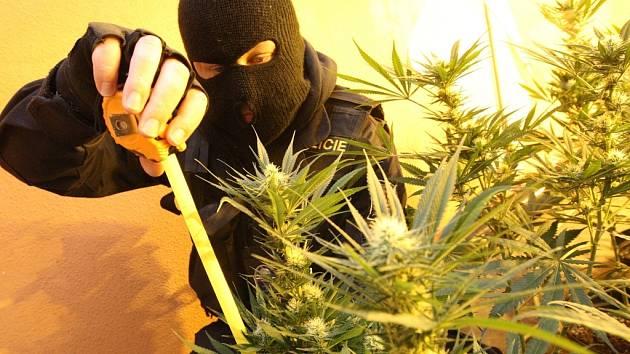 Největší pěstírnu marihuany v roce 2012 odhalili kriminalisté v objektu bývalé restaurace Šantán v mostecké ulici V. Nezvala u 8. ZŠ.