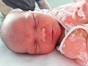 Sára Příbrská se narodila mamince Ivaně Kolminovské z Mostu 24. ledna 2018 v 7.31 hodin. Měřila 50 cm a vážila 3,34 kilogramu.