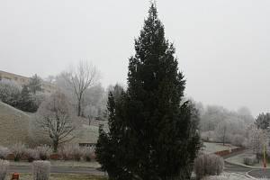 Stromek na Meziboří opět stojí. Rozsvítí se zítra.