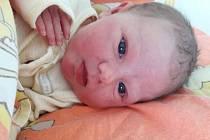 Daniela Pašková se narodila 30. října 2017 ve 13.30 hodin mamince Markétě Paškové z Mostu. Měřila 48 cm a vážila 3,43 kilogramu.