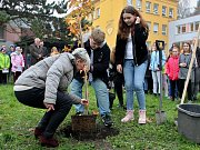 Před školou Litvínov - Hamr se sázel strom, který místní žákovský parlament pořídil za sběr papíru