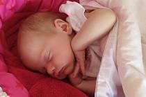 Adélka Havrlová se narodila v chomutovské nemocnici 31. 5. 2020 v 15.47 hodin. Měřila 50cm a vážila 3000 g.