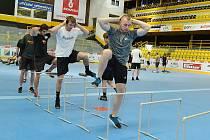 Hokejisté širšího kádru HC Verva Litvínov zahájili letní přípravu.