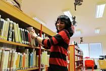 Litvínovská knihovna má další úspěch. Ilustrační foto.