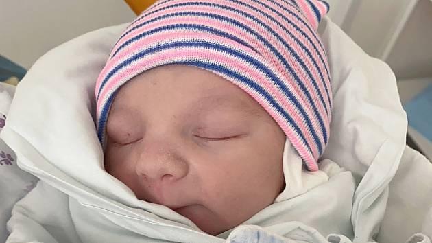 Kristián Hřebík se narodil rodičům Tereze Nemcové a Otakaru Hřebíkovi 4. února ve 12.52 hodin. Měřil 49 cm, vážil 3,05 kg.