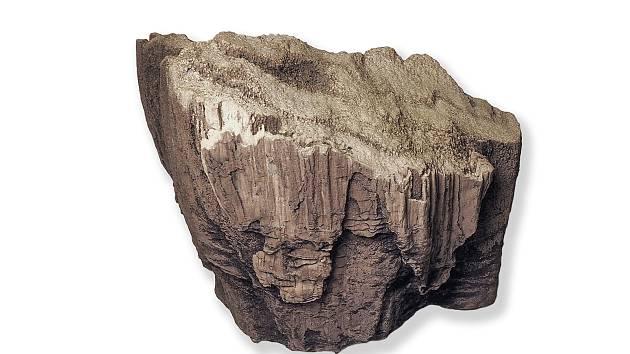Exponátem měsíce března je zkamenělé dřevo z lomu Vršany.