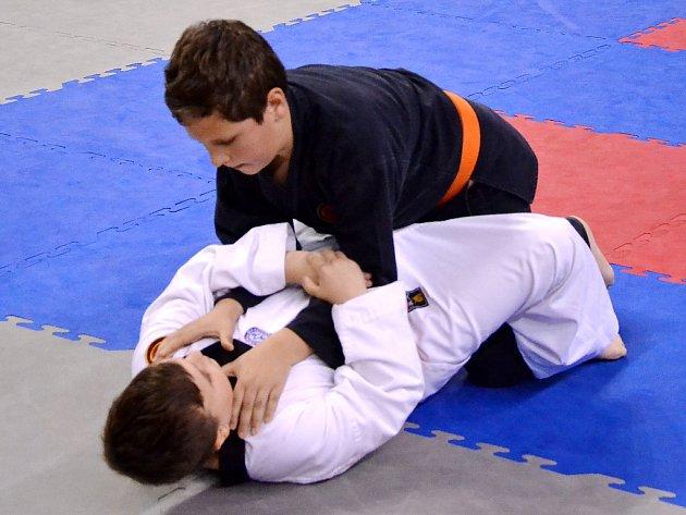 Mostecká sportovní hala hostí šampionát Allkampf - Jitsu.
