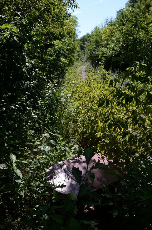 Mostecký park Hrabák od 90. let pustne. Není v něm žádné zázemí pro lidi.