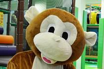 Před lety se měl stěhovat i Úřad práce v Mostě, měl obsadit bývalé sídlo KSČ. Nevyšlo to a teď se tam otevřelo zábavní centrum Jungle Arena, kde našlo práci přes deset lidí. Jedna dívka hraje opici.