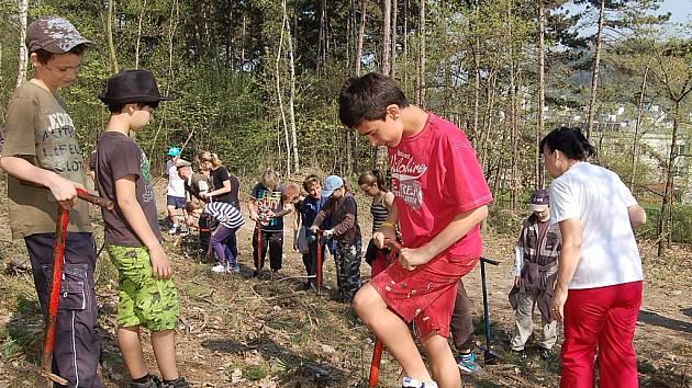 Žáci 1. ZŠ s učitelkou Ivanou Strnadovou vysázeli stovky jehličnanů. Škola patří k dlouholetým partnerům Správy městských lesů Most.