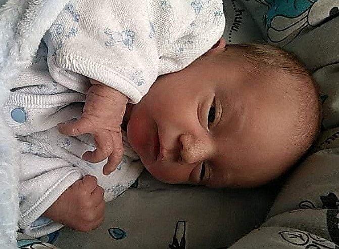 Dominik Kmoníček se narodil 31. března v 9.58 hodin rodičům Veronice Svobodové a Karlu Kmoníčkovi. Měřil 46 cm a vážil 2,85 kg.