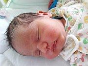 Filip Svoboda se narodil mamince Zdeňce Svobodové z Loun 25. ledna 2019 v 10.45 hodin. Měřil 50 cm a vážil 3,54 kilogramu.