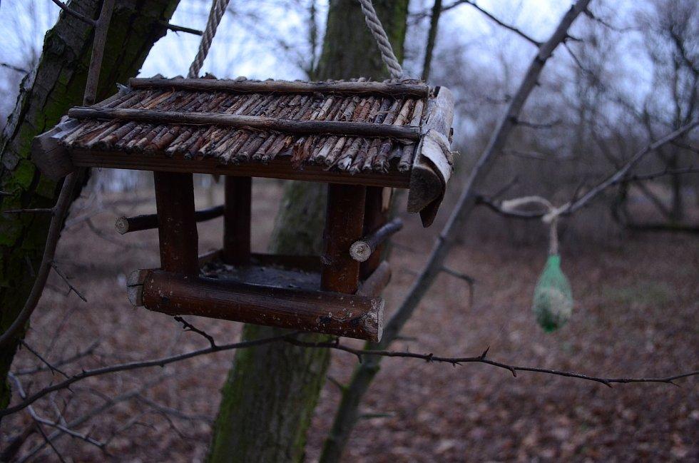 Krmítka pro ptáky a drobné savce v parku Šibeník.