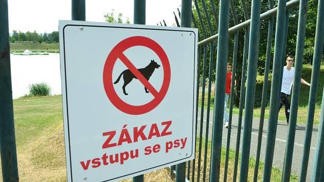 Most letos opraví dvě multifunkční hřiště na míčové sporty v oploceném rekreačním areálu Benedikt, kam byl letos zakázán vstup se psy.
