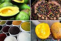 Virunga trhy jsou dnes a zítra v mosteckém Centralu.