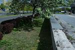 Zchátralé prostranství v centru Mostu