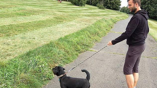 V parku Šibeník v Mostě musejí být psi na vodítku, volně smějí běhat jen s náhubkem.