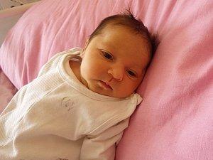 Marie Tatárová se narodila 11. února 2018 v 10.13 hodin mamince Marii Tatárové z Janova. Měřila 51 cm a vážila 3,93 kilogramu.