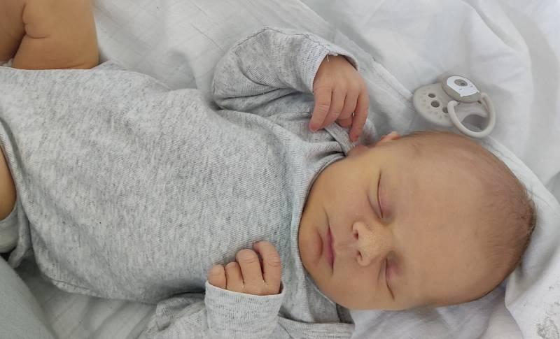 Václav Mašek se narodil 6. září ve 22.40 hodin v mostecké nemocnici Simoně Suché a Václavu Maškovi. Měřil 49 cm a vážil 3,22 kg.