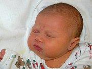 Mamince Petře Švihurové z Mostu se 1. února ve 2.50 hodin narodila dcera Sofie Kranátová. Měřila 49 centimetrů a vážila 3,46 kilogramu.