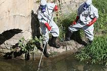 Aktivisté odebírají vzorky z řeky Bíliny.