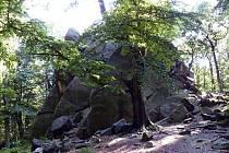 Salesiova výšina leží v lese u města Osek.