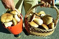 Mostecký houbař se vrátil ze sklizně.